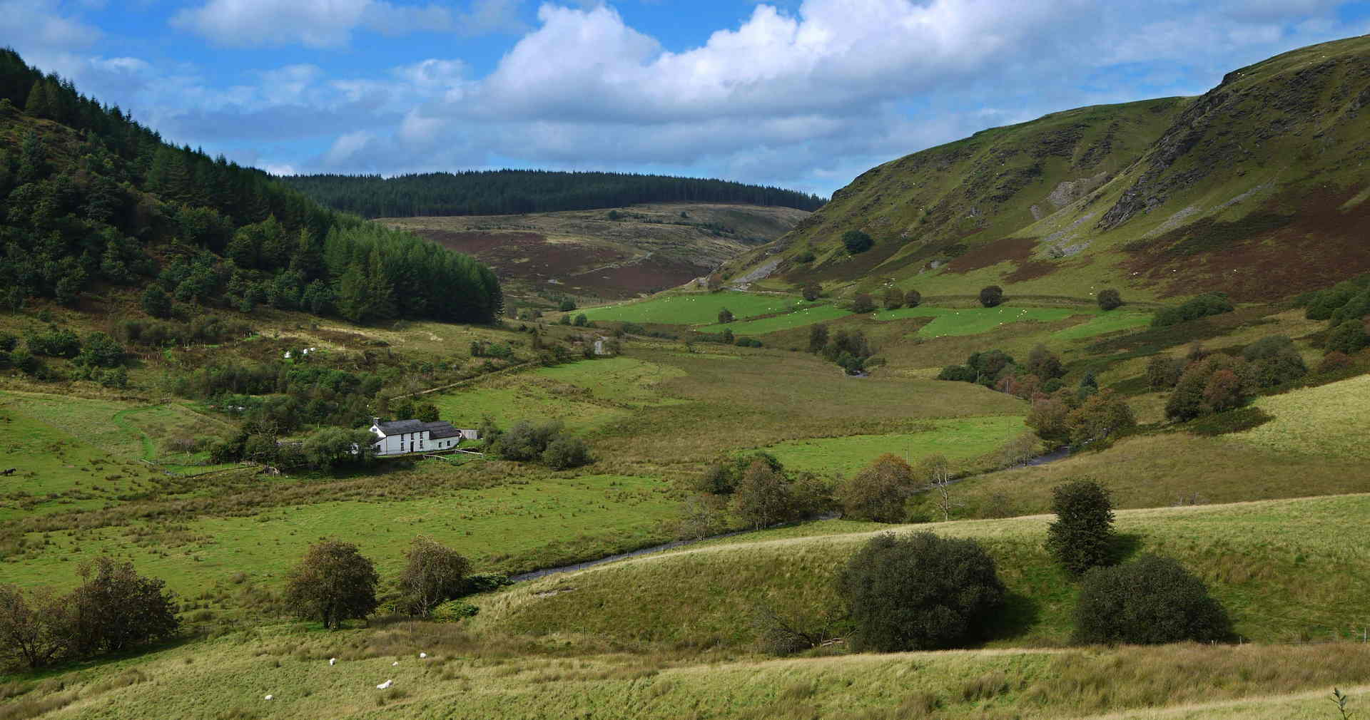 Ideal Eistedfod accommodation - 30 mins drive from Tregaron